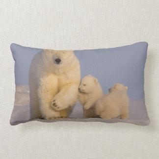 polar bear, Ursus maritimus, sow with newborn 3 Lumbar Pillow
