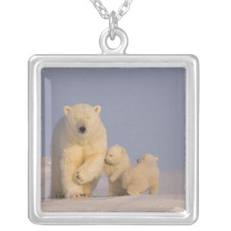 polar bear, Ursus maritimus, sow with newborn 3 Silver Plated Necklace