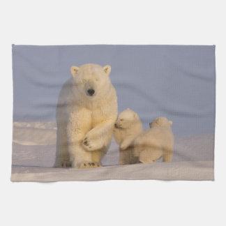 polar bear, Ursus maritimus, sow with newborn 3 Tea Towel