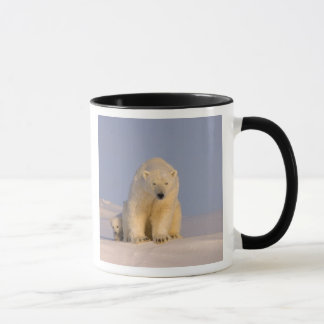 polar bear, Ursus maritimus, sow with newborn Mug