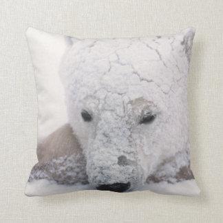 Polar Bear, Urus Maritimus, Arctic, Churchill, Throw Pillow