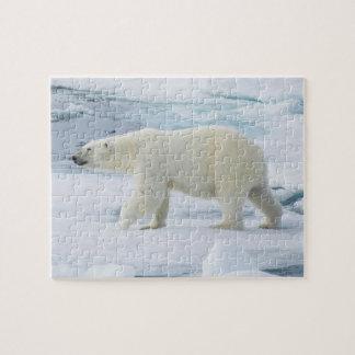 Polar bear walking, Norway Jigsaw Puzzle