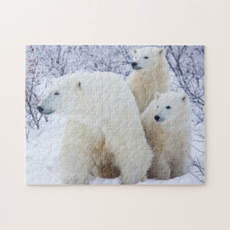 Polar Bears and Two cubs Jigsaw Puzzle
