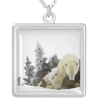 Polar Bears At Wapusk National Park Silver Plated Necklace