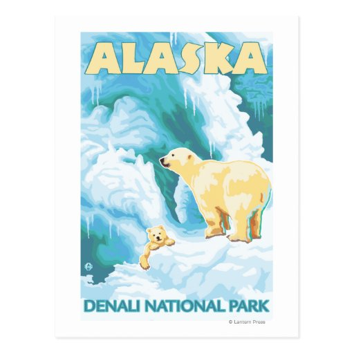 Polar Bears & Cub - Denali National Park, Alaska Post Cards