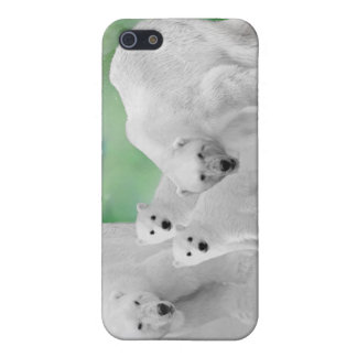 Polar Bears, cubs and northern lights Cover For iPhone 5