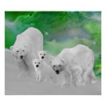 Polar Bears, cubs and northern lights Poster