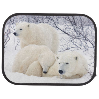 Polar Bears female and Two cubs 3 Floor Mat