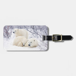 Polar Bears female and Two cubs 3 Luggage Tag