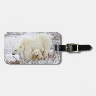 Polar Bears female and Two cubs Bag Tag