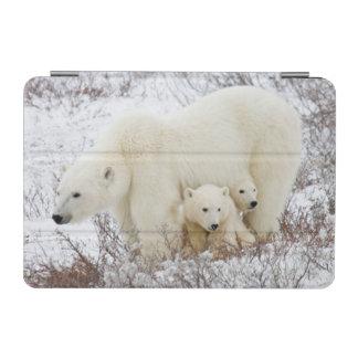 Polar Bears female and Two cubs iPad Mini Cover
