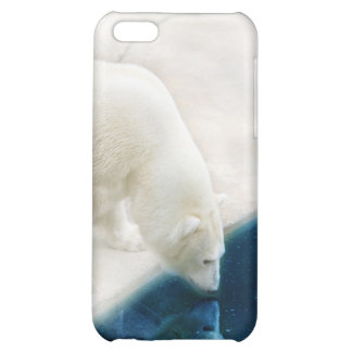 Polar bears iPhone 5C cases