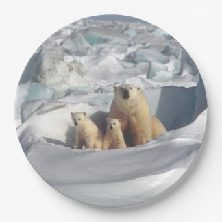 Polar Bears Mother Cub Arctic Wildlife Plates