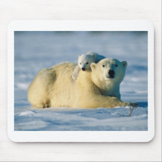 polar bears mouse pad