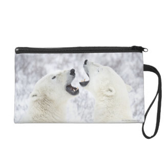 Polar Bears playing in the snow Wristlet