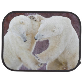 Polar Bears sparring 2 Car Mat