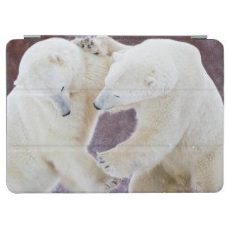 Polar Bears sparring 2 iPad Air Cover