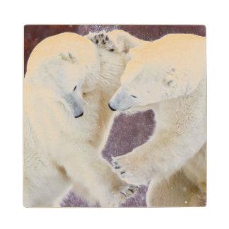 Polar Bears sparring 2 Wood Coaster