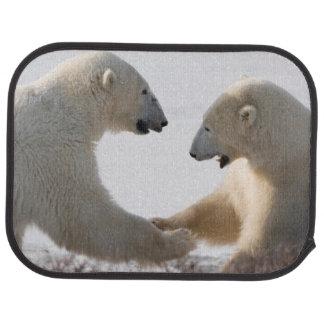 Polar Bears sparring Car Mat