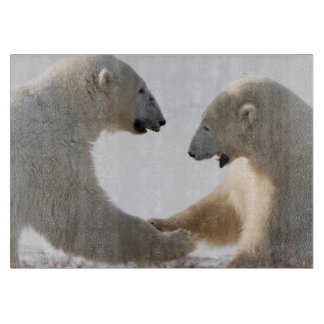 Polar Bears sparring Cutting Board