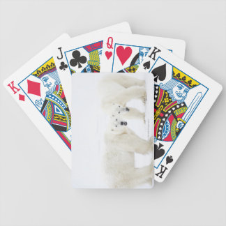 Polar Bears standing on snow after playing 2 Bicycle Playing Cards