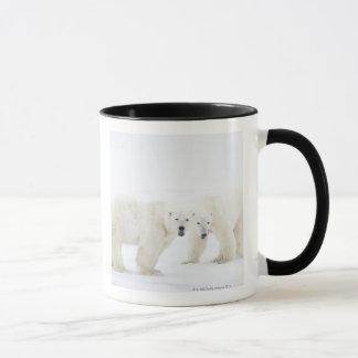 Polar Bears standing on snow after playing 2 Mug