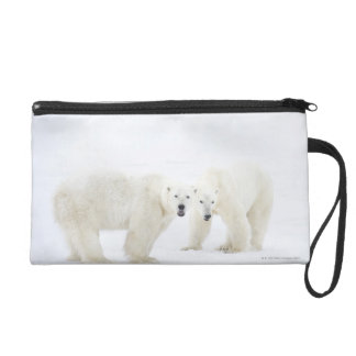 Polar Bears standing on snow after playing 2 Wristlet Purse