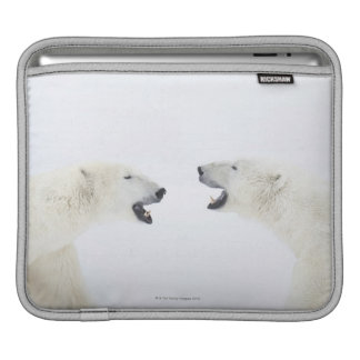 Polar Bears standing on snow after playing iPad Sleeve