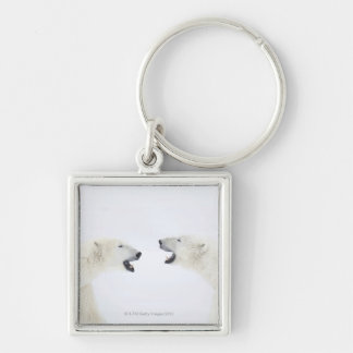 Polar Bears standing on snow after playing Key Ring