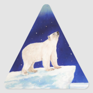 Polar Lights Triangle Sticker
