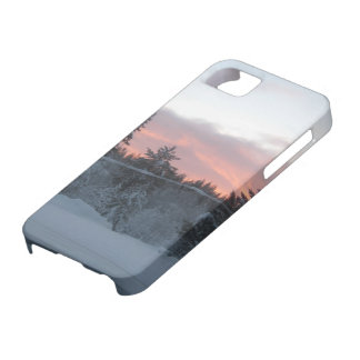 Polar night case for the iPhone 5