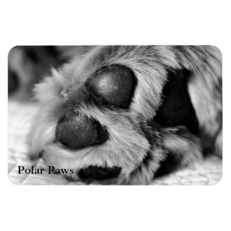 Polar Paws, Golden Retriever Rectangular Photo Magnet