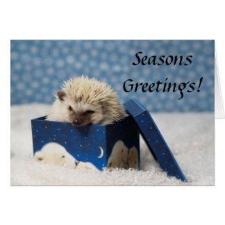 "Polar Pog ""Seasons Greetings"" card"
