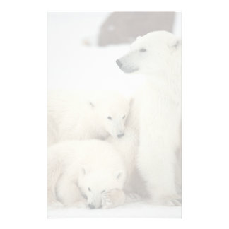 Polar She-bear With Cubs Customized Stationery