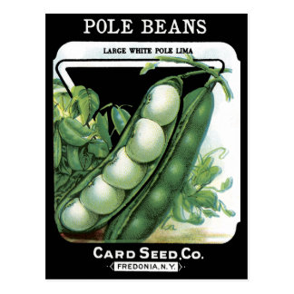 Pole Beans Vintage Seed Packet Lima Garden Veggies Postcard