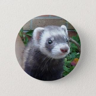 Polecat ferret 6 cm round badge