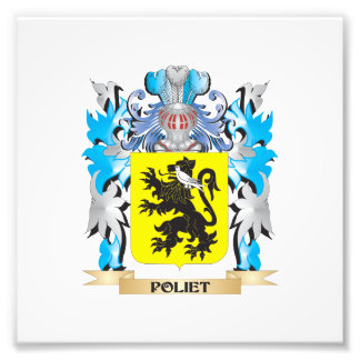 Poliet Coat of Arms - Family Crest Photo Print