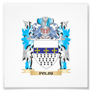 Polini Coat of Arms - Family Crest Photograph
