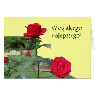 Polish Birthday Sto Lat Red Roses Card