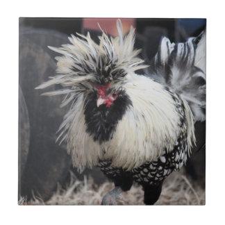 Polish Crested Rooster Tile