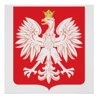 Polish Eagle Red Shield Poster