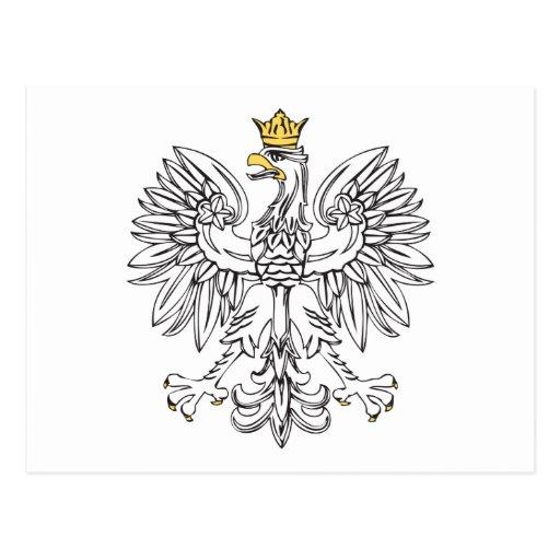 Polish Eagle With Gold Crown Postcard