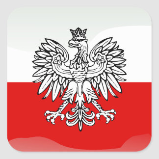 Polish glossy flag square sticker