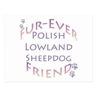 Polish Lowland Sheepdog Fur-ever Friend Postcard