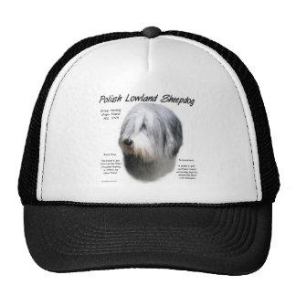 Polish Lowland Sheepdog History Design Mesh Hats