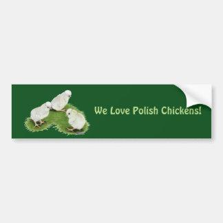 Polish Splash Chicks Bumper Sticker