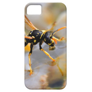 Polistes dominula on drinking water iPhone 5 cases