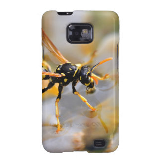 Polistes dominula on drinking water galaxy SII cover