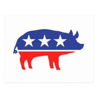 Political Party Pig Mascot Postcard