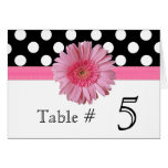 Polka Dot & Pink Gerber Daisy Wedding Table Number Note Card